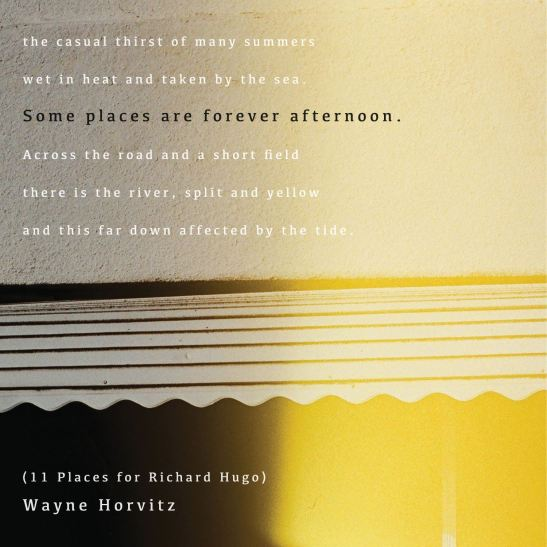 Wayne Horvitz - Some Places Are Forever Afternoon (Holy Grail From Hell)